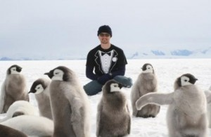 pingvin party
